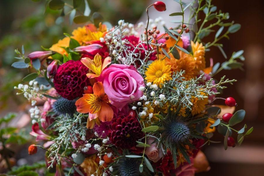 suhe-roze-ali-sveze-cvetje